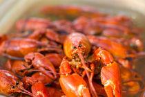 Crayfishes von Kristiina  Hillerström