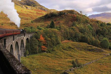 Steam-train-img-5664