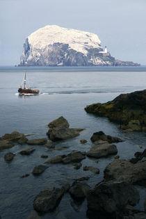Bass rock, island near North Berwick, East Lothian, Scotland von Linda More