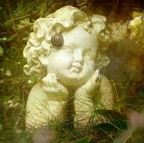 Gartennostalgie von Franziska Rullert