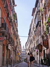 Tienda Siesta by derdia