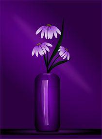 Study in Purple by Tim Seward