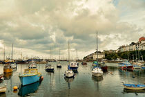 Brixham's harbour by sharon lisa clarke