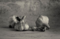 Spanish Garlic Black and White Still Life  by mark haley