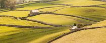 Dales Landscape von mark haley