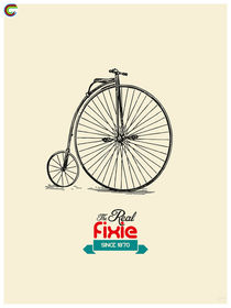 The Real Fixie.  by zyclism