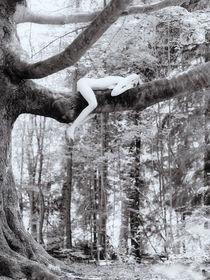 girl laying on tree von Henk Bleeker