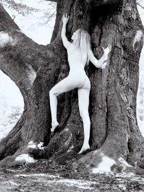 girl climbing tree von Henk Bleeker