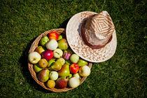 A Fruit Basket and a Straw Hat von olgasart