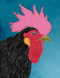 Rooster by Jose  Fragoso