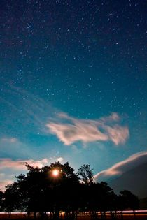 The Night Sky by Buster Brown Photography