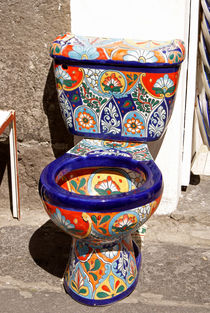 COLOURFUL MEXICAN TOILET by John Mitchell
