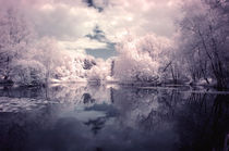 Lilac Reflections at Watermead Park by Simon Gladwin