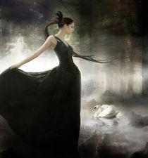 Mirror of serene shadows von Ana Cruz
