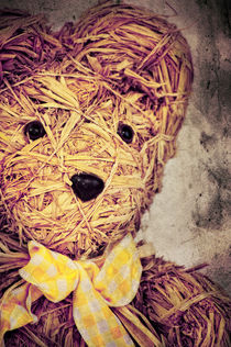 My Teddy Bear von AD DESIGN Photo + PhotoArt