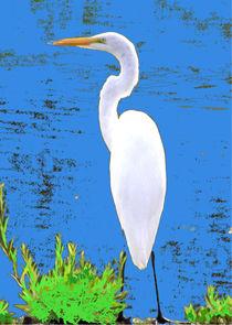 White Egret von Pamela Rivera