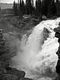 Athabasca Falls von RicardMN Photography