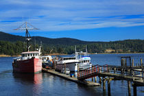 Fishing boats in Sooke Harbour by Louise Heusinkveld