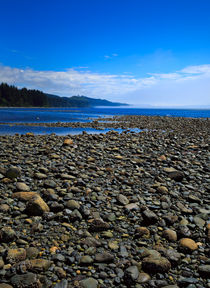 Pebble Beach at Low Tide by Louise Heusinkveld