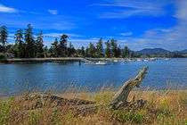 Whiffin Spit and Sooke Harbour by Louise Heusinkveld