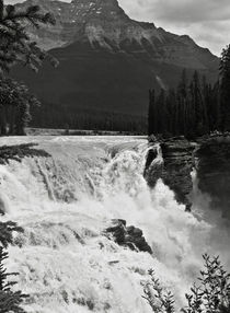Athabasca Falls by RicardMN Photography