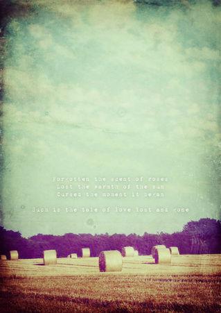 Lovelostandgone-poetrypicture-c-sybillesterk