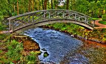 Brücke über Wildbach von Wolfgang Dufner
