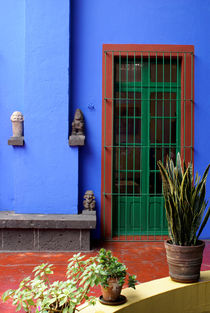 THE BLUE HOUSE Mexico City by John Mitchell