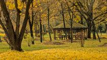 In autumn von VLADO KRSTEVSKI