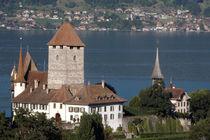 Schloss Spiez mit Schlosskirche by lorenzo-fp
