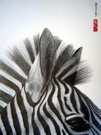 Zebra close up by ERIC  STAVROS ART