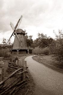 Das Dorf von Norbert Fenske
