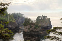 Cape Flattery Inlet by Paul Anguiano