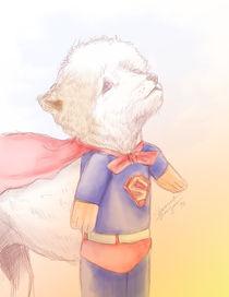 Hero by Shamira Naznin