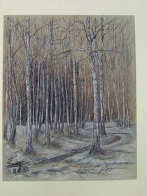 Birken bei Tauwetter by Holger Hausmann