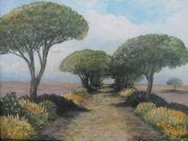 Toskana 1 by Holger Hausmann