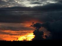 Sunset Ebula by Lis Todd