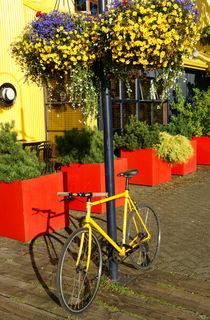 YELLOW BICYCLE Vancouver Canada von John Mitchell