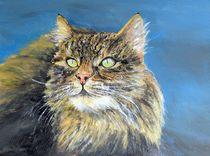 Katze von Elisabeth Maier