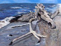 Strandgut von Elisabeth Maier