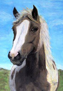 Pferdeportrait von Elisabeth Maier