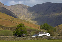 Wasdale Head by David Pringle