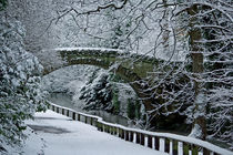 Bridge in Snow by David Pringle