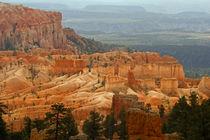 Hoodoos at Bryce Canyon von David Pringle