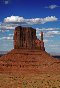 The East Mitten Butte by David Pringle
