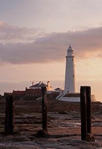St Marys Lighthouse von David Pringle