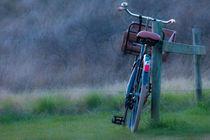 Bike parking by visualverve
