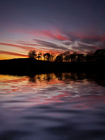 Sunset Reflection by David Pringle