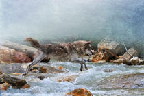 Wolf jumping over a river by Louise Heusinkveld