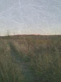 Dawn Path by Sharon Harvey